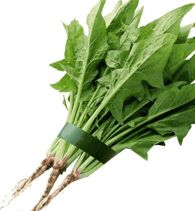 ★春季减肥瘦身食谱 4款蔬菜汤降脂快
