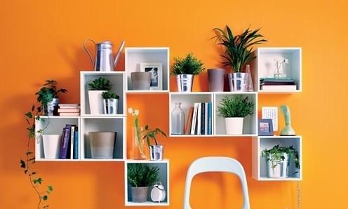 欣赏 花卉/欣赏巧用自然元素图片 给室内盆栽盆景花卉画上植物妆