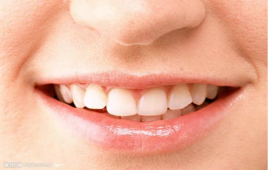 唇部皮肤结构图