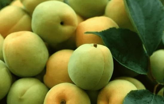 怎么改善粗糙皮肤 吃这7种食物改善肌肤粗糙