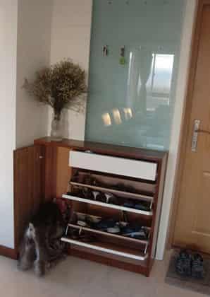 客厅进门鞋柜装修效果图 如何装饰时尚美家