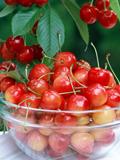 春季吃什么水果有利于减肥 高纤水果快速瘦