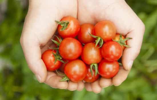 红血丝吃什么水果管用,吃什么水果去红血丝