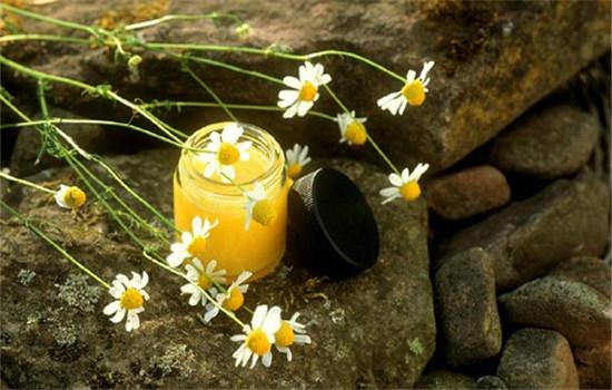 洋甘菊精油的使用方法,洋甘菊精油怎么用,洋甘菊精油的用法
