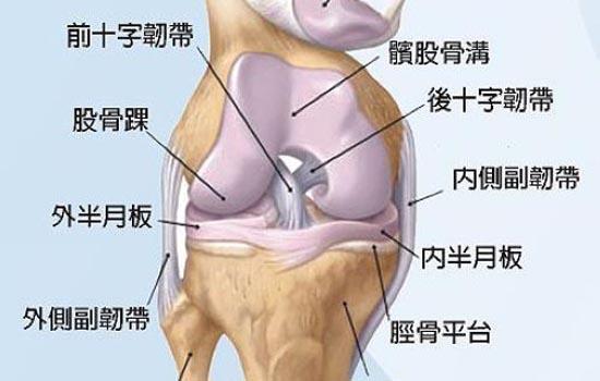 膝盖疼是怎么回事,膝盖酸痛是怎么回事,膝关节疼痛是怎么回事