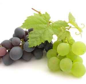 解酒的水果有哪些 营养美味的水果也能解酒