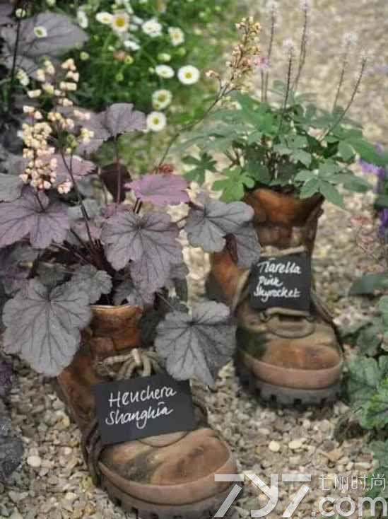 创意diy盆栽植物手工制作,diy盆栽小制作过程,盆栽植物diy设计图片