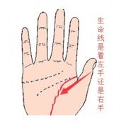 生命线看左手还是右手  最准确的方法是先左后右综合分析