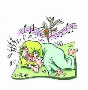 蚊子为什么喜欢在耳边 蚊子飞到耳朵里怎么办