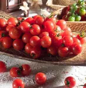 西红柿和圣女果有什么区别 西红柿和圣女果一样吗
