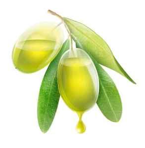 橄榄油的作用是什么 橄榄油日常七大作用
