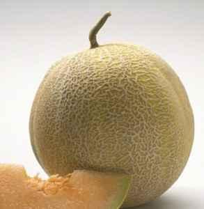 哈密瓜买什么样的好吃 哈密瓜怎么挑甜的