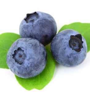 蓝莓是热性还是凉性 怎么辨别食物的寒热