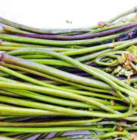 蕨菜可以生吃吗 蕨菜必须焯水后再食用