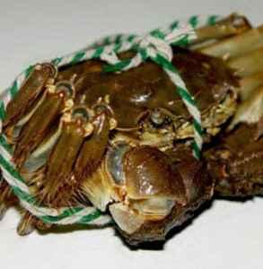 大闸蟹买多重的好