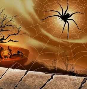 萬圣節蜘蛛妝容 嫵媚毒性蜘蛛妝