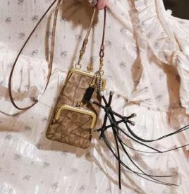今年流行什么包包款式 2019是口金包的天下