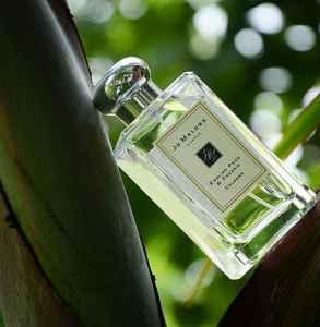 祖瑪瓏英國梨和小蒼蘭的味道 冬日的暖香