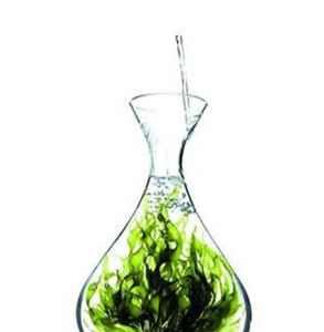 奥氏海藻提取物的作用 强大的抗氧化剂