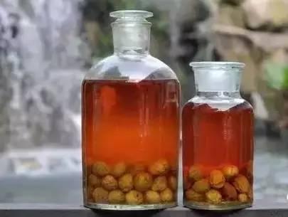 青梅酒的做法和功效 每天喝它祛斑美白抗衰老