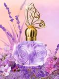 Anna Sui 安娜苏2013年推出全新款紫蝶恋女士淡香水