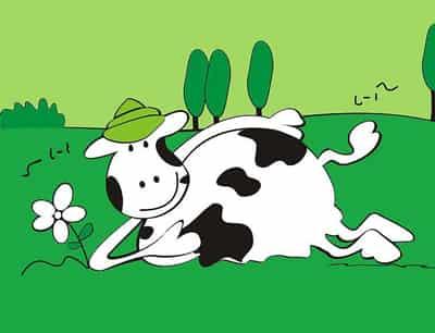【2014年马年生肖纪念币】生肖属牛的2014马年运势