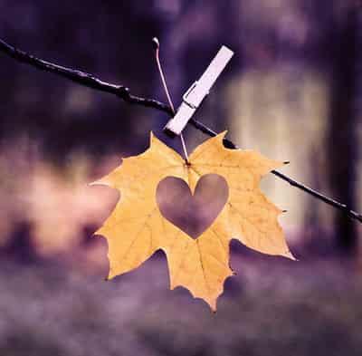 十二星座最忌讳的什么_十二星座最忌讳的什么 教你在情人节俘获爱情