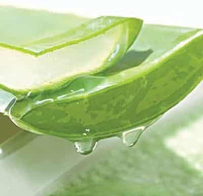 芦荟胶的多种用途 细嫩美肌养成计