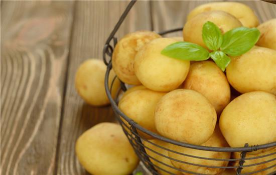 土豆面膜怎么做,土豆面膜的做法,怎样自制土豆面