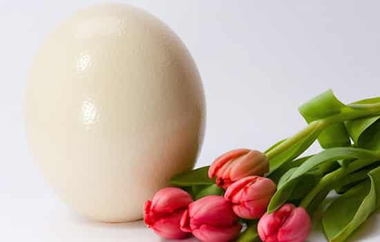 醋蛋液能去斑吗,醋蛋液可以祛斑吗,醋蛋液祛斑有
