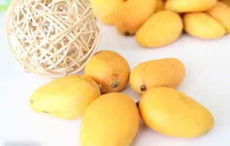 一岁的孩子能什么水果不能吃什么水果