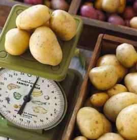 吃土豆会胀气吗 土豆吃多的确会致肚子胀气
