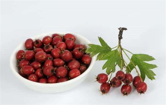 红枣枸杞泡水的好处养生功效有哪些