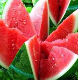 为什么西瓜籽是白色的 白籽西瓜形成的3个因素