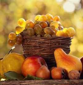 初秋吃什么水果好 夏末初秋宜吃7种水果润肺生津