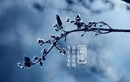 [霜降的拼音]霜降吃柿子 霜降为什么要吃柿子