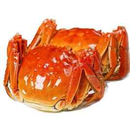 感冒鼻塞能吃螃蟹吗 最好忌吃螃蟹