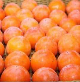 红薯和柿子能同时吃吗 红薯和柿子隔多久吃