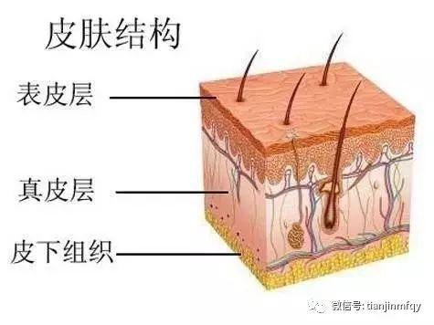 敏感肌肤如何护肤 呵护程度很重要