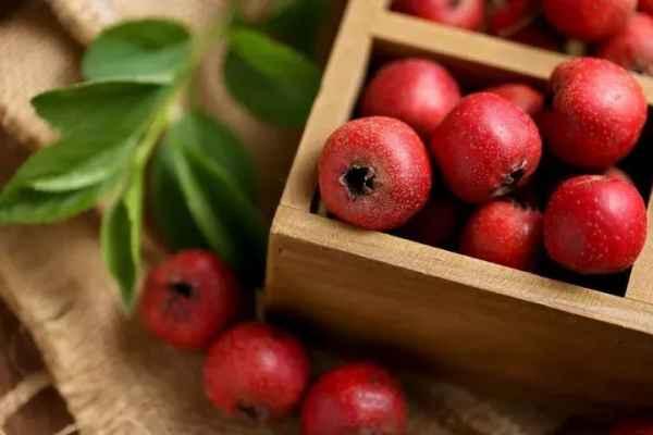 养身达人必备的水果食疗方法。
