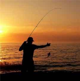 冬天如何钓鱼 野钓怎么钓鲫鱼