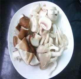 平菇的功效与作用 常吃这一物越吃越健康