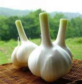 吃大蒜胃难受怎么办 如何缓解大蒜的辣