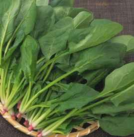 吃菠菜牙齿很涩怎么办 菠菜的5个去涩法