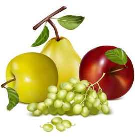 春季时令水果有哪些 春季吃什么水果好呢