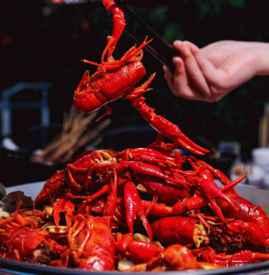 吃小龙虾过敏什么症状 小龙虾过敏后该怎么办