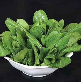 油菜减肥法 通便强身瘦10斤