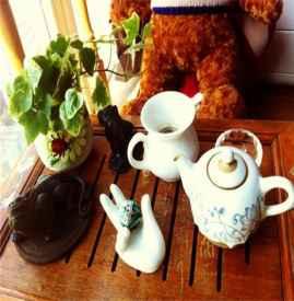 不同体质喝茶注意事项 不同体质该怎么喝茶
