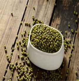 绿豆的食用功效 常吃绿豆有什么好处