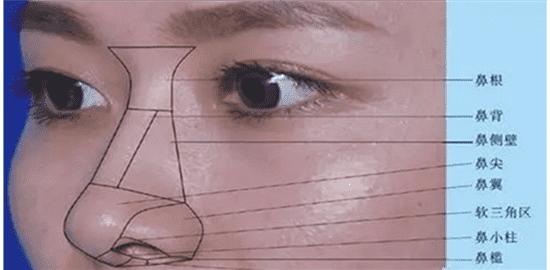 如何缩小鼻子必须收集最实用的窄翼干货